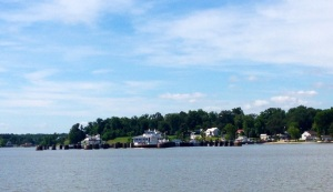 The shoreline as the ferry approached the Surry side of the James River.