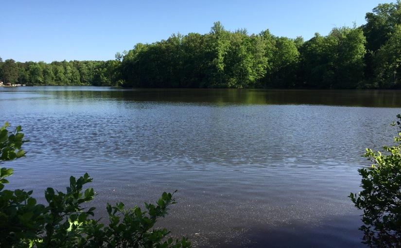 Bear Creek Lake State Park,VA