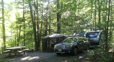 campsiteno63_8501web