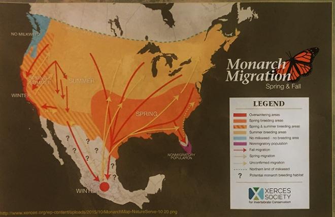 MigrationMap0458Web