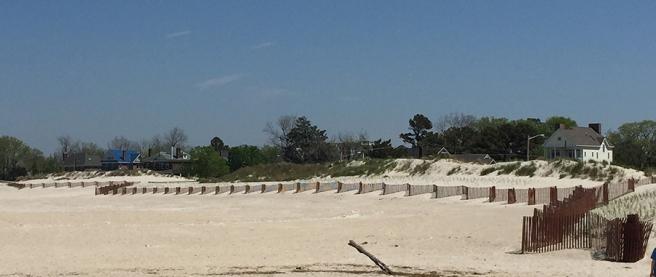 SandFence0258Web