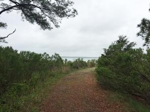 Trail0334Web
