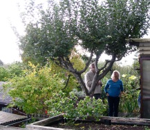 She is having some trouble with her apple tree, and Jack consults on possible pruning.