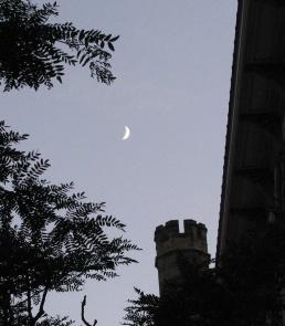 Moon1370