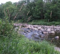 Riverspeak1168