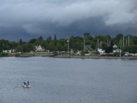 Stormy1582
