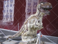 07-Dinosaur2324