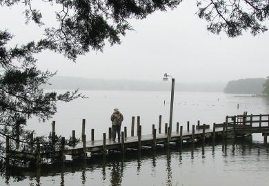 FoggyFishing2235