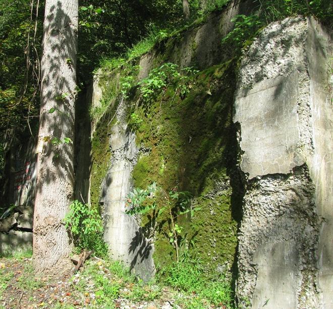 Ruins2358