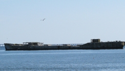 Cement ships grounded as a breakwater and habitat area