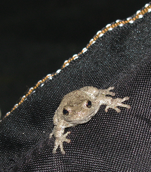 Toad2671Web